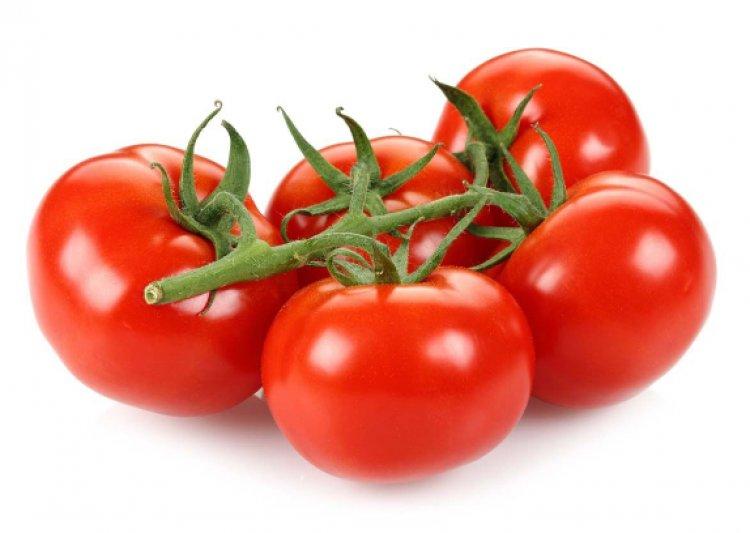 Salerno: 821 tonnellate di pomodoro semilavorato ritenuto contaminato
