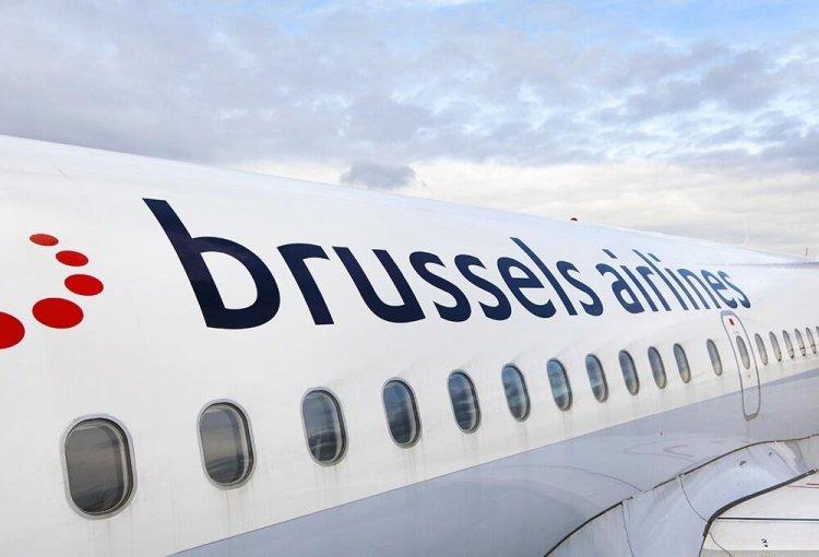 Bird strike, uccello risucchiato nel motore dell'aereo, Brussels Airlines