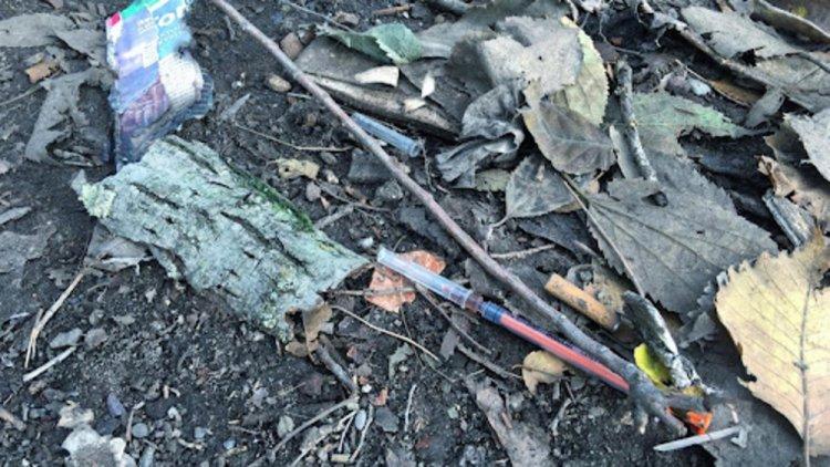 Rogoredo: il bosco della droga prova a diventare parco pubblico