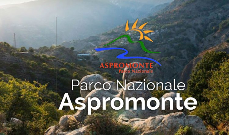 """Parco nazionale d'Aspromonte e di """"Sfilzi, faggete dei Forestali"""