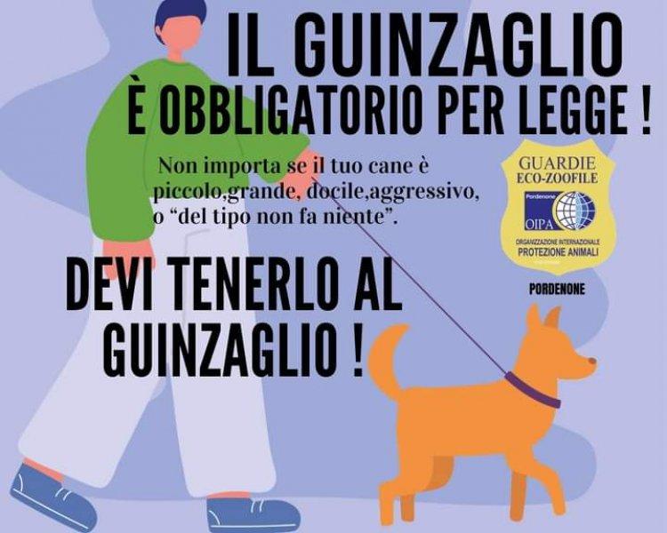 Italia: guinzaglio obbligatorio per legge